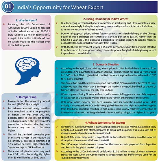 India's Opportunity for Wheat Export